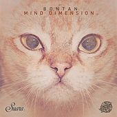 Mind Dimension by Bontan