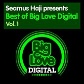 Seamus Haji presents Best of Big Love Digital, Vol. 1 - EP by Various Artists