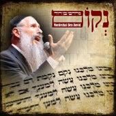 Nekom by Mordechai Ben David