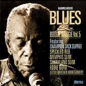 Barrelhouse, Blues & Boogie Woogie Vol. 5 by Various Artists