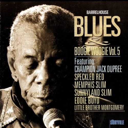 Barrelhouse, Blues & Boogie Woogie Vol. 5 by Various Artists