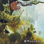 Pagan by Cruachan