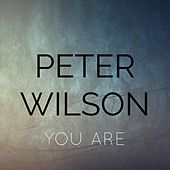 You Are by Peter Wilson