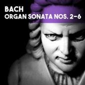 Bach: Organ Sonatas Nos. 2-6 by Ivan Sokol