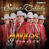 Somos de a Caballo by Los Mayitos De Sinaloa