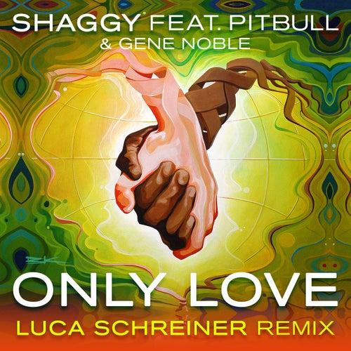 Only Love (Luca Schreiner Island House Mix) by Shaggy