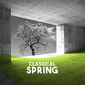 Classical: Spring by Various Artists