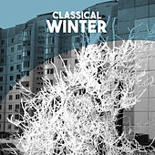 Classical: Winter by Various Artists