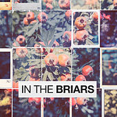 In The Briars by Various Artists