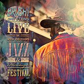 Live at New Orleans Jazz & Heritage Festival by Brushy One String