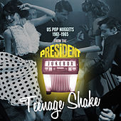 Teenage Shake - Us Pop Nuggets 1961-1965 from the President Jukebox by Various Artists