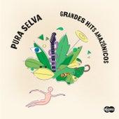 Pura Selva: Grandes Hits Amazónicos von Various Artists