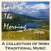 Lark in the Morning: A Collection of Irish Traditional Music by Various Artists