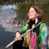 Lotus Blossom by Andrea Brachfeld