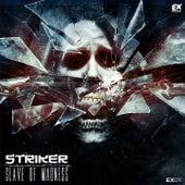 Slave of Madness by Striker
