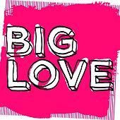 Big Love, Vol. 2: Mixed by Seamus Haji - EP by Various Artists