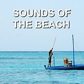 Sounds of the Beach by Calm Ocean Sounds