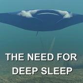The Need for Deep Sleep by Calm Ocean Sounds