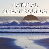 Natural Ocean Sounds by Calm Ocean Sounds