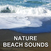 Nature Beach Sounds by Calm Ocean Sounds