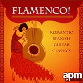 Flamenco! Romantic Spanish Guitar Classics by Various Artists