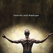 Hybrids and Mashups by Warner
