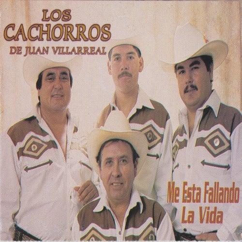 Me Esta Fallando La Vida by Los Cachorros de Juan Villarreal
