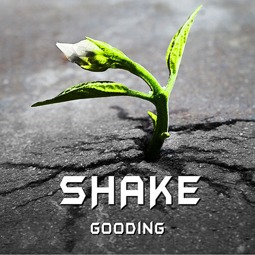 Shake - Single by GOODING