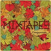 Companions by Mixtapes