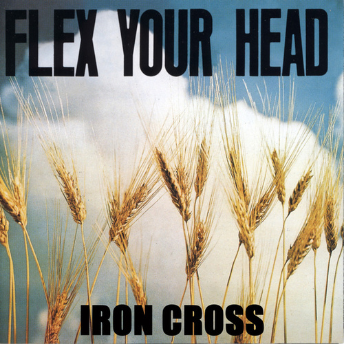 Flex Your Head by Iron Cross