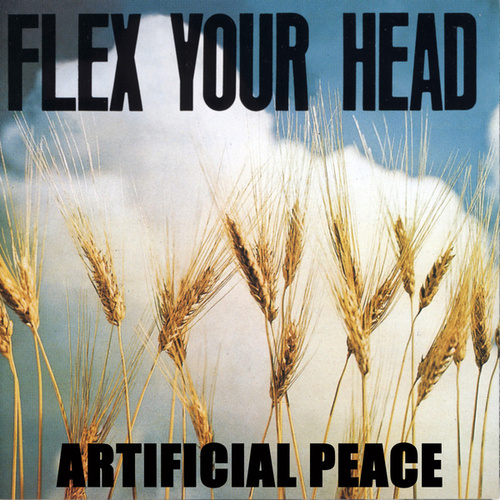 Flex Your Head by Artificial Peace
