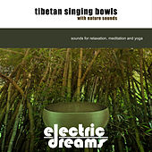 Tibetan Singing Bowls with Nature Sounds by Electric Dreams