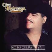 No Es Culpa Tuya by Chuy Lizárraga y Su Banda Tierra Sinaloense