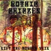 Lift the Cobweb Veil by Gothic Chicken