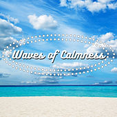 Waves of Calmness by Various Artists