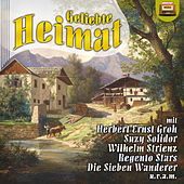 Geliebte Heimat by Various Artists