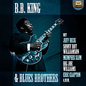B. B. King & Blues Brothers von Various Artists