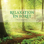 Relaxation En Foret by Stuart Jones