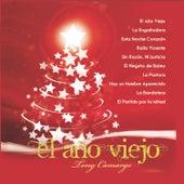 El Año Viejo by Tony Camargo