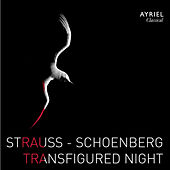 Strauss & Schoenberg: Transfigured Night by Various Artists