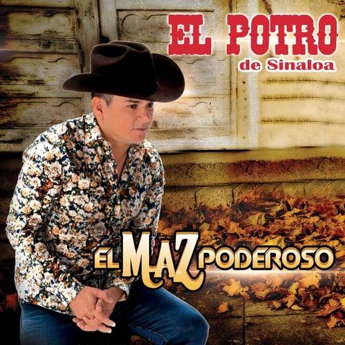 El Maz Poderoso by El Potro De Sinaloa