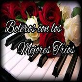 Boleros Con los Mejores Tríos by Various Artists
