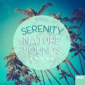 Serenity Nature Sounds by New Age