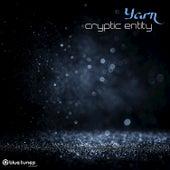 Cryptic Entity by Yarn