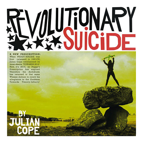 Revolutionary Suicide Pt. 1 by Julian Cope