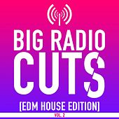 Big Radio Cuts (EDM House Edition), Vol. 2 by Various Artists