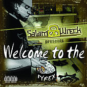Welcome To The Pyrex von Salam Wreck