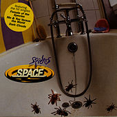 Spiders by Space