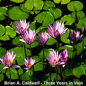 Three Years in Vain by Brian A. Caldwell