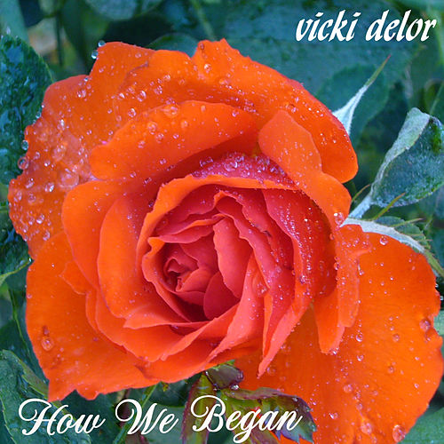 How We Began by Vicki DeLor